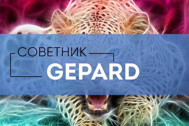 Форекс советник гепард 7 стабильная стратегия форекс от 100 до 200$ в день