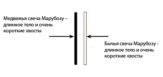 Марибозу best forex broker metatrader 5 binary options