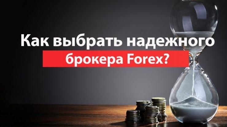 Критерии выбора брокеров на форекс форекс без депозита с выводом прибыли